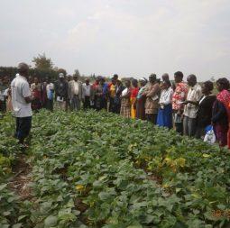 farmers training