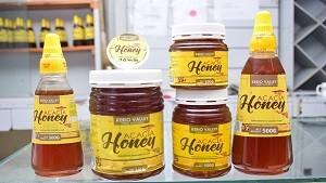 Kerio Valley Pure Natural Acacia Honey